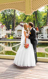 Beautiful wedding couple in park. They kiss and hug each other Royalty Free Stock Images