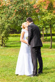 Beautiful wedding couple in park. They kiss and hug each other Royalty Free Stock Photos