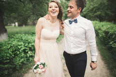 Beautiful wedding couple in park. kiss and hug each other Royalty Free Stock Images