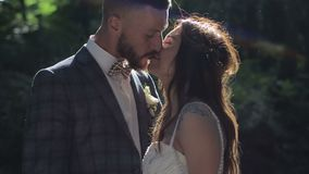Beautiful wedding couple in park kissing at sunset stock video