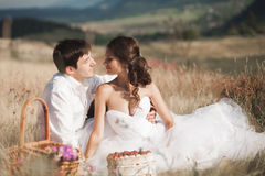Beautiful wedding couple at picnic with fruit and cake on a background of mountains Stock Images