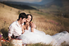 Beautiful wedding couple at picnic with fruit and cake on a background of mountains Stock Photography