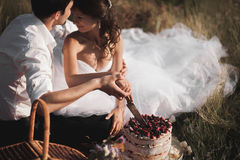 Beautiful wedding couple at picnic with fruit and cake on a background of mountains Royalty Free Stock Photos