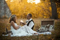 Beautiful wedding couple at a picnic under tree Stock Photography