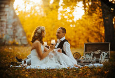 Beautiful wedding couple at a picnic under tree Royalty Free Stock Image
