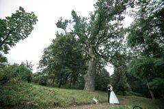 Beautiful wedding couple posing Royalty Free Stock Photo