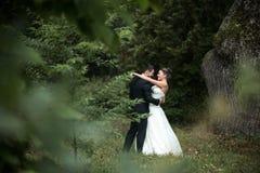 Beautiful wedding couple posing Stock Photography