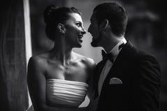 Beautiful wedding couple posing Stock Images