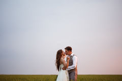 Beautiful wedding couple posing at the nature Royalty Free Stock Photos