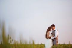 Beautiful wedding couple posing at the nature Stock Photos
