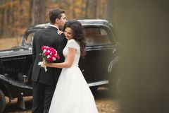 Beautiful wedding couple posing near splendid retro car Stock Photo