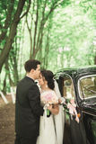 Beautiful wedding couple posing near splendid retro car Royalty Free Stock Images