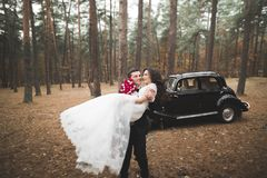 Beautiful wedding couple posing near splendid retro car Stock Image