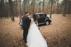 Beautiful wedding couple posing near splendid retro car Stock Photography