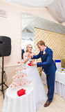 Beautiful wedding couple is pouring champagne indoors. Beauty of bridal interior for marriage. Stock Image