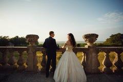 Beautiful wedding couple, stylish bride and handsome groom, hugg Stock Photos
