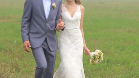Beautiful wedding couple is walking on the green stock video footage