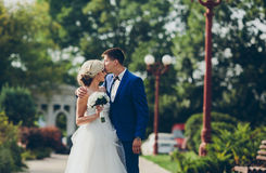 Beautiful wedding couple walking Royalty Free Stock Image