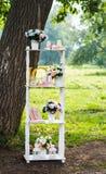Beautiful wedding decorations Stock Photography