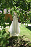 Beautiful wedding dress hanging on a tree Stock Images
