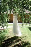 Beautiful wedding dress hanging on a tree Royalty Free Stock Photos