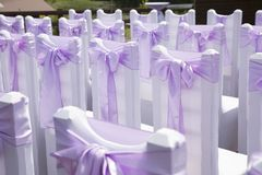 Beautiful wedding event decoration. Violet bow Royalty Free Stock Images
