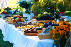 Beautiful wedding feast in nature, abundance of meals on a table. Royalty Free Stock Photography