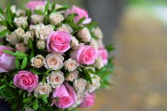A beautiful roses. A beautiful wedding h bouquet of pink and yellow roses Royalty Free Stock Photo
