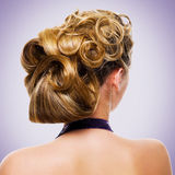 Beautiful wedding hairstyle Stock Photography