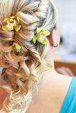 Beautiful wedding hairstyle - rear view Royalty Free Stock Images