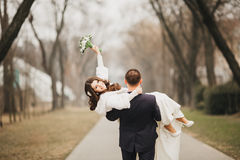 Beautiful wedding, husband and wife, lovers man Royalty Free Stock Images