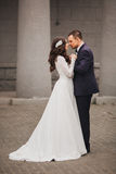 Beautiful wedding, husband and wife, lovers man Royalty Free Stock Image