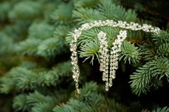 Beautiful wedding jewellery earings detail. Beautiful earings jewellery of the Bride before wedding - romantic detail Stock Images