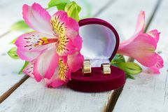 Wedding Offer. Beautiful Wedding Offer With Rings Royalty Free Stock Photo