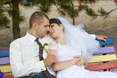 Beautiful Wedding Portrait Stock Photography