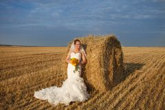 Beautiful Wedding Portraits Royalty Free Stock Images