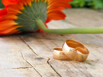 Beautiful wedding rings Royalty Free Stock Photo