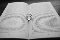 Beautiful wedding rings Stock Photography