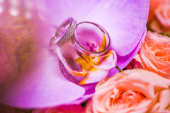 Beautiful wedding rings with diamonds on the purple Orchid. Stock Images
