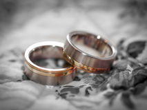Beautiful Wedding Rings Stock Image