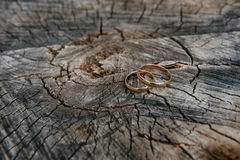 Beautiful wedding rings on wooden background, a stump Royalty Free Stock Photography