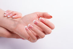 Beautiful well-groomed female hands. stock photo