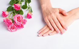 Beautiful well-groomed female hands. French manicure with pink roses on a white background royalty free stock images