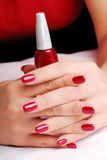 Beautiful well-groomed fingers Stock Photography