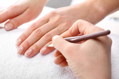 Beautiful well-groomed hands, the woman in the beauty salon Royalty Free Stock Image