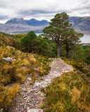 Beautiful Wester Ross mountains and Loch Torridon, Scotland, UK Royalty Free Stock Photography