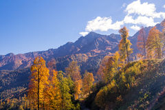Beautiful Western Caucasus mountains in autumn Royalty Free Stock Photo