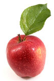 Beautiful wet red apple with leaf Royalty Free Stock Photos