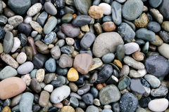Beautiful wet sea pebbles Stock Image