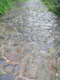 Beautiful wet stone path Stock Images